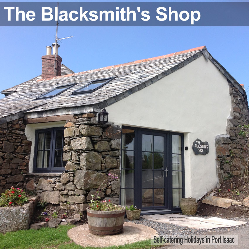 Smithy cottage kitchen area - Port Isaac Holiday Cottages The Blacksmiths Shop Port Isaac Sleeps 2 A