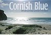Cornish Blue Apartment  - Self Catering