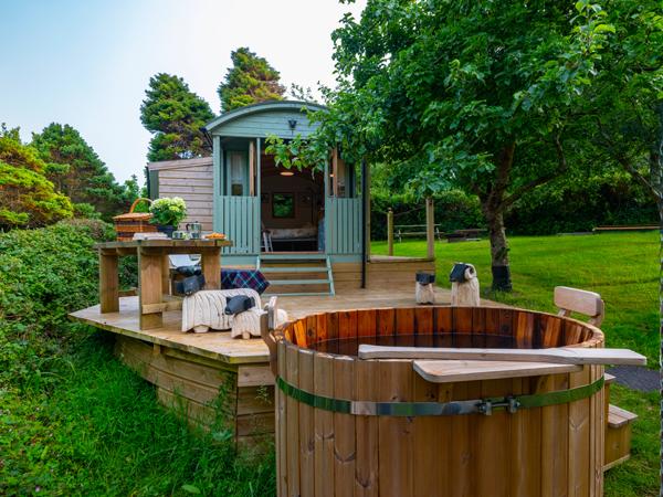 Foxy Shepherd Hut - Glamping Camping