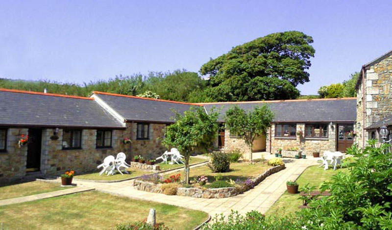Dog friendly cottage in cornwall
