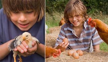 Heath Farm Holidays - Self catering