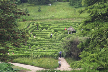 The Maze at Glendurgan Gardens - Photo Matthew Brannan