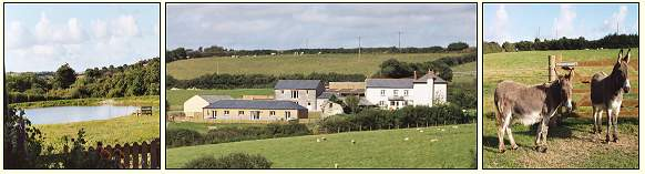 Pollaughan Farm Holidays - Self Catering