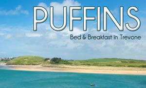 Puffins Bed & Breakfast - Bed & Breakfast