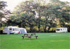 Skyburriowe Camping