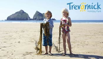 Trevornick Holiday Park - Camping & Holiday Cottages     Newquay     Self-catering + Camping + Tourers